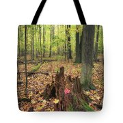 Early Autumn Woods Tote Bag