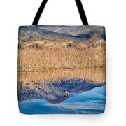 Early Bird Gets The Worm Tote Bag by Cat Connor
