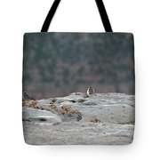 Early Birds On The Edge Tote Bag