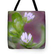 Early Blossoms  Tote Bag