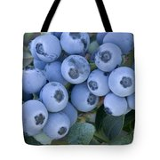 Early Blue Blueberries Tote Bag