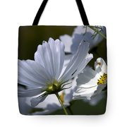 Early Dawns Light On Fall Flowers 02 Tote Bag