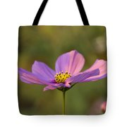 Early Dawns Light On Fall Flowers 05 Tote Bag