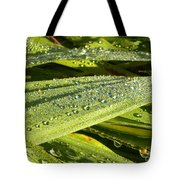 Early Dew Tote Bag