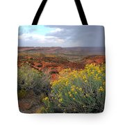 Early Evening Landscape At Arches National Park Tote Bag