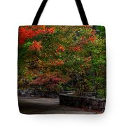Early Fall At Talimena Park Tote Bag