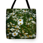 Early Fall Tote Bag