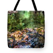 Early Fall Number Two Tote Bag