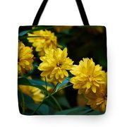 Early Fall Of Goldenglow Tote Bag
