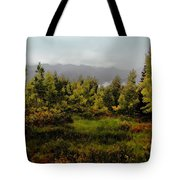 Early Fall On Kebler Pass Tote Bag