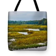 Early Fall On The Moose River - Old Forge New York Tote Bag by David Patterson