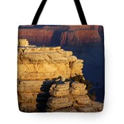 Early Light In The Canyon Tote Bag