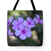 Early Morning Floral Beauty  Tote Bag