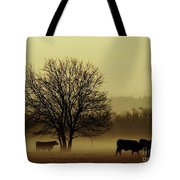 Early Morning Fog 008 Tote Bag