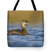 Early Morning Grebe Tote Bag