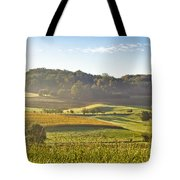 Early Morning Landscape In Fog Tote Bag