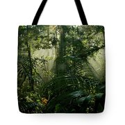 Early Morning Light In The Rain Forest Tote Bag