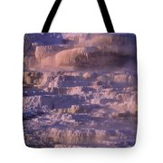 Early Morning Light On Minerva Springs Yellowstone National Park Tote Bag