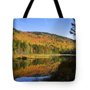 Early Morning On Greenough Pond  Tote Bag