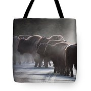 Early Morning Road Bison Tote Bag