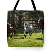 Early Morning Romp Tote Bag
