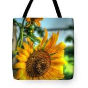 Early Morning Sunflower Tote Bag