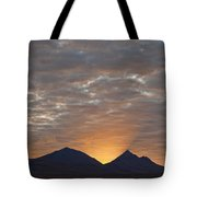 Early Morning Sunlight Shining From Tote Bag