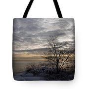Early Morning Tree Silhouette On Silver Sky Tote Bag