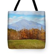 Early November At First Bridge Tote Bag