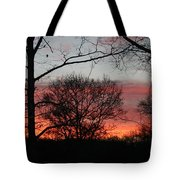 Early One Morning IIi Tote Bag