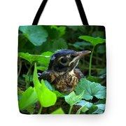 Early Robinhood Tote Bag