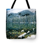 Early Snow At Nymph Lake Tote Bag