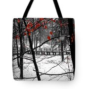 Early Snow 4 Tote Bag