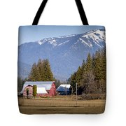 Early Spring  -  150310a-098 Tote Bag