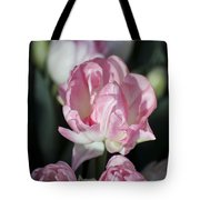 Early Spring 4 Of 5 Tote Bag