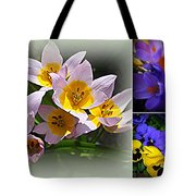 Early Spring Blossoms Tote Bag