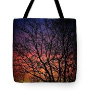Early Spring Dusk  Tote Bag