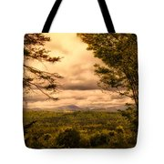 Early Spring Rain Tote Bag