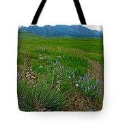 Early Summer Walk Tote Bag