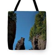 East Coast Landmark Tote Bag