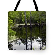 East Texas Cyprus Pond Tote Bag