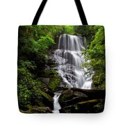 Eastatoe Falls II Tote Bag