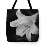 Easter Lily 2013 Tote Bag