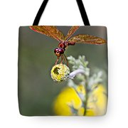 Eastern Amberwing Dragonfly Tote Bag