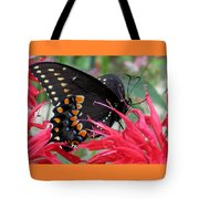 Eastern Black Swallowtail And Bee Balm Tote Bag