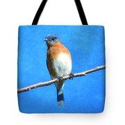 Eastern Bluebird II Tote Bag