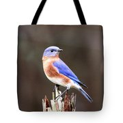 Eastern Bluebird - The Old Fence Post Tote Bag