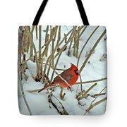 Eastern Cardinal - Cardinalis Cardinalis Tote Bag