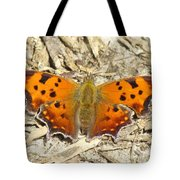 Eastern Comma Tote Bag