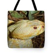 Eastern Diamondback Rattlesnake Albino Tote Bag